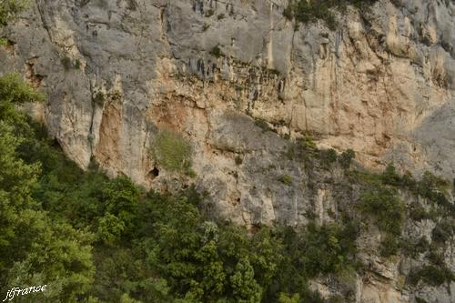 Chemin de courchon 33