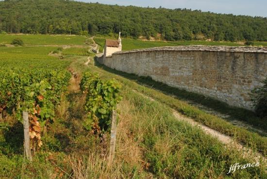 Route des vins de bourgogne 2019 14