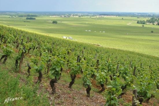 Route des vins de bourgogne 2019 2