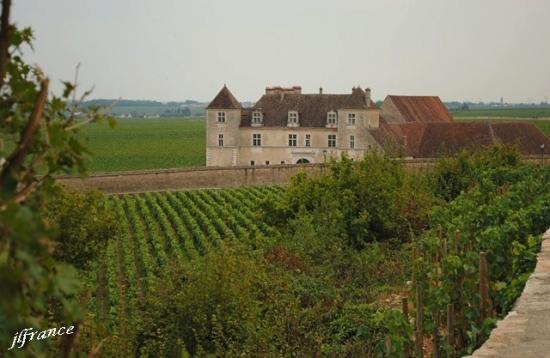 Route des vins de bourgogne 2019 5