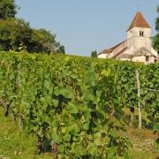 Route des vins de bourgogne 2019 9